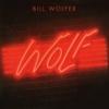 Bill Wolfer / Wolf (デジタルの夜) (1982年) フロント・カヴァー
